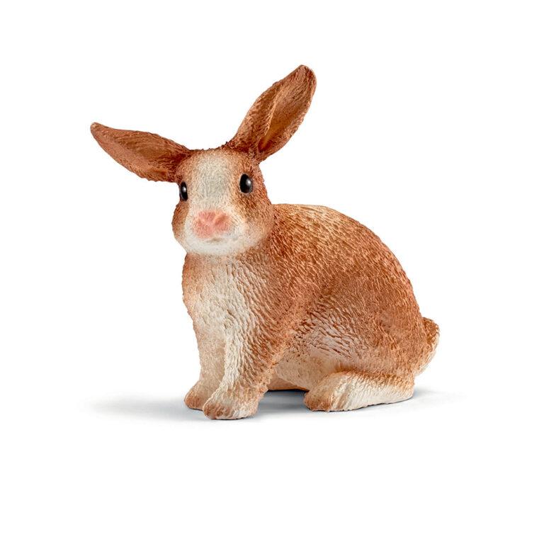 13827.-Brun-kanin